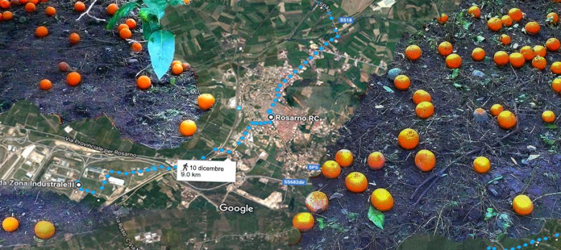 mappe-e-arance-per-evento