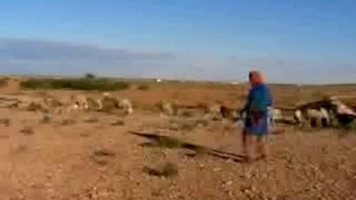 Sogno d'amore - Tunisia