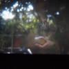 TUTTI I NOSTRI AFFANNI di Davide Crudetti e Paola Di Mitri, un nuovo film ZaLab